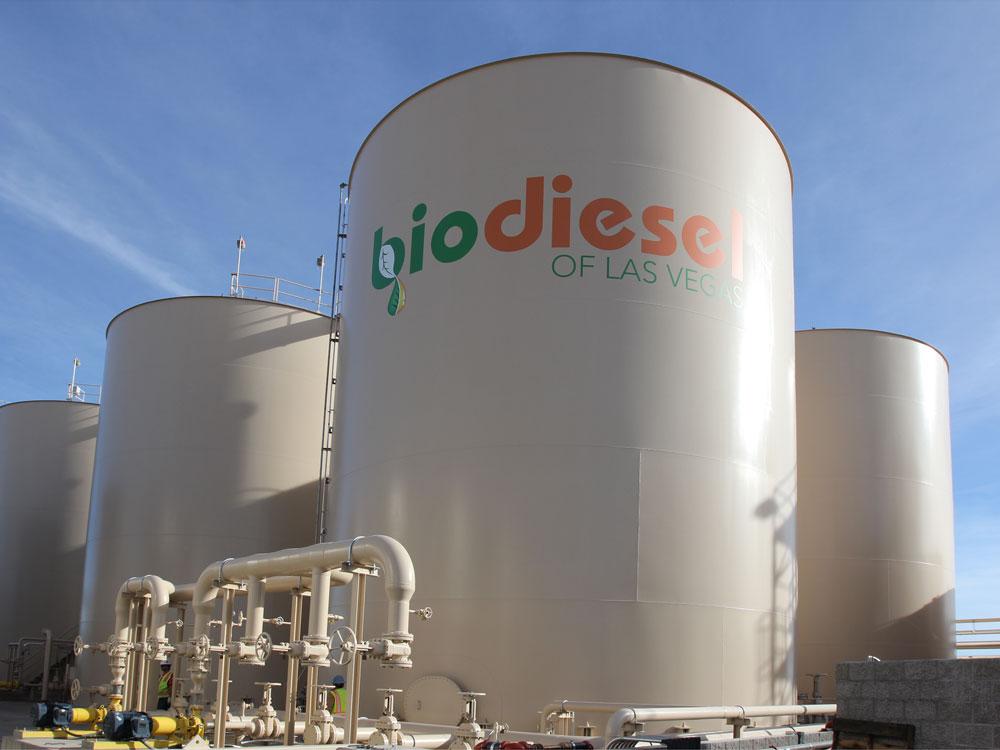 Биодизель - что это за топливо и почему его не производят в РФ