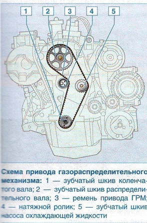 ремень грм на рено логан