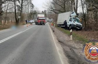 Известны подробности смертельного наезда грузовика на велосипедиста на трассе Калининград — Балтийск