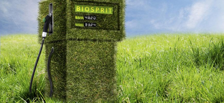 Автоконцерн Mazda планирует переводить ДВС на биотопливо